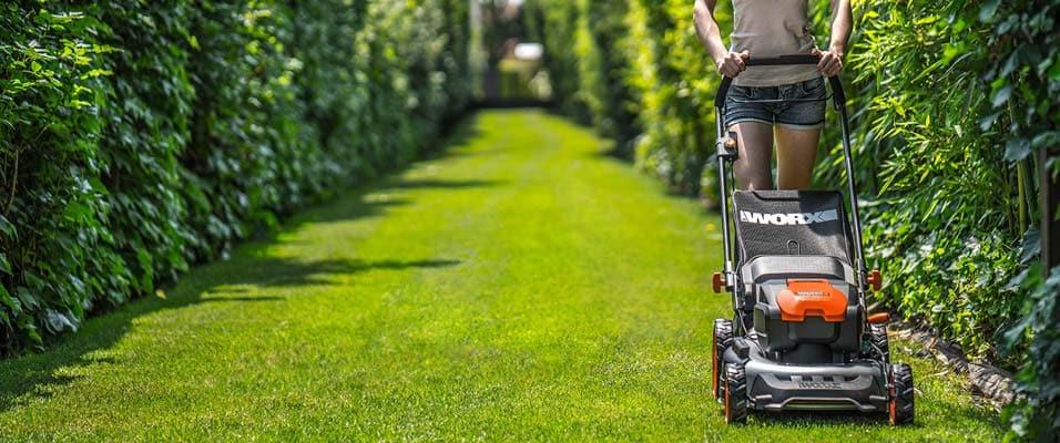escolher um cortador de grama